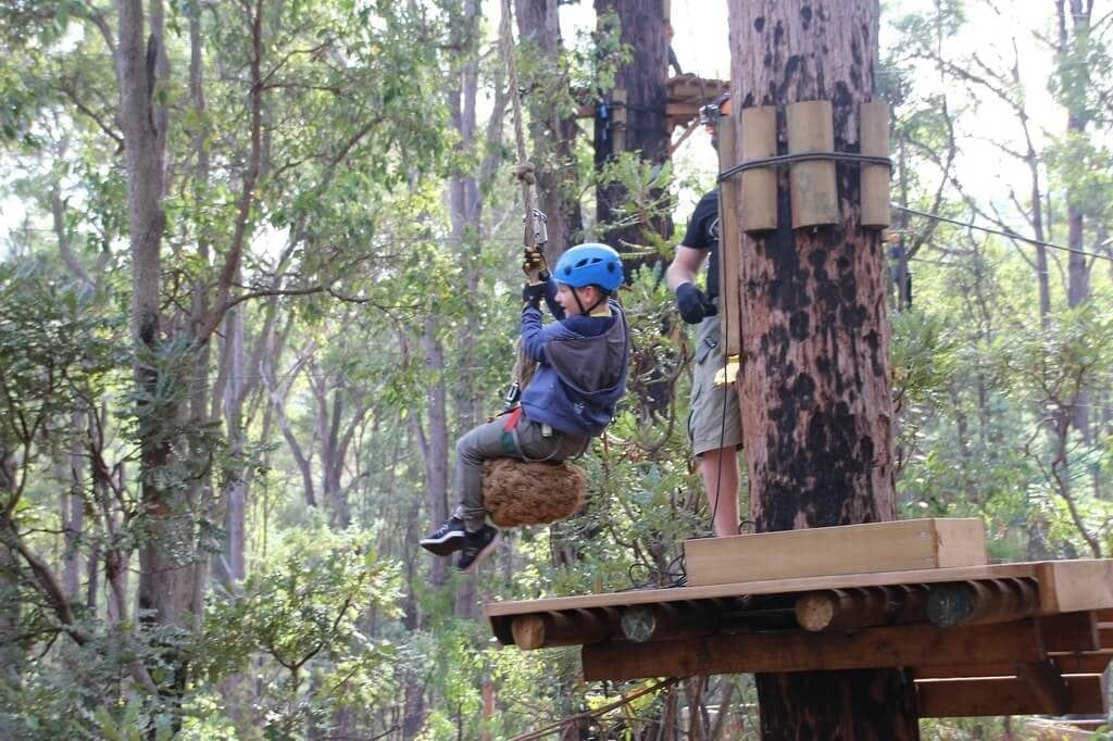 Trees Adventure Dwellingup