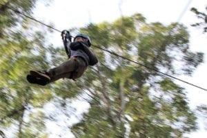 Trees Adventure Dwellingup