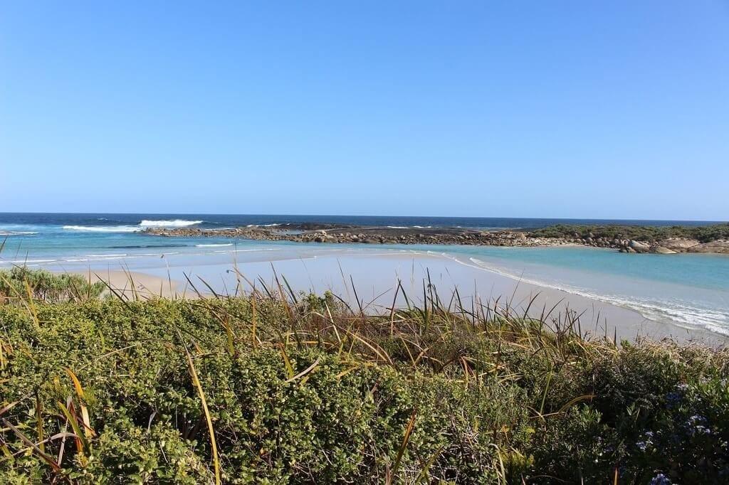 Madfish Bay denmark