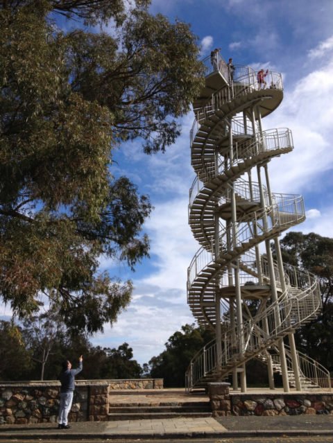 DNA Tower, Kings Park