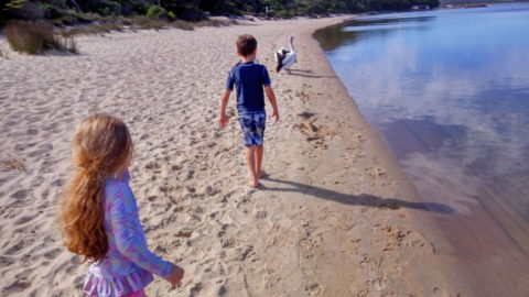 Coalmine Beach Holiday Park, Walpole
