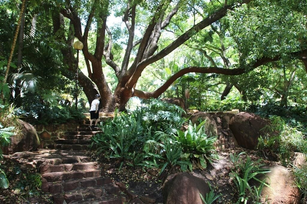 Harold Boas Gardens, West Perth