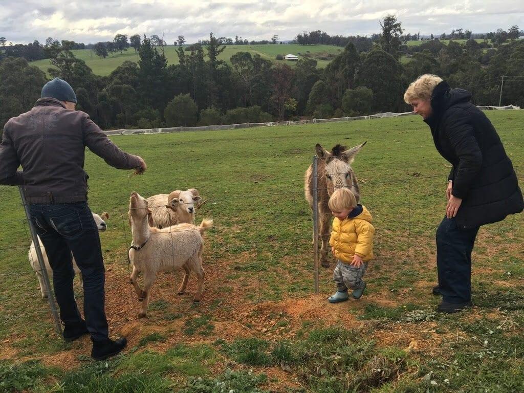 Pemberton Farm Chalets