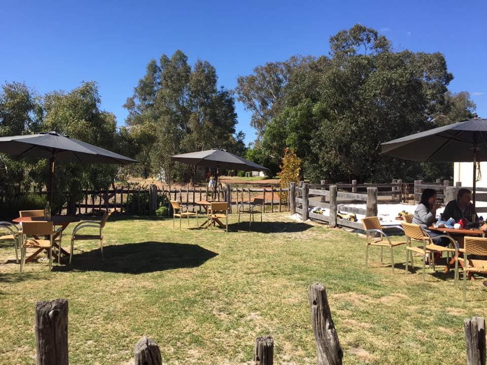 Williams Woolshed, Williams