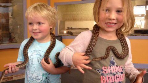 West Australian Reptile Park, Swan Valley