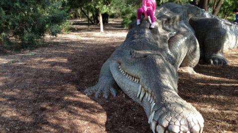 Kings Park – Top 10 Things to do in Kings Park