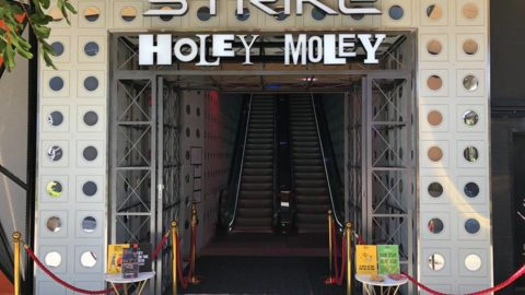 Holey Moley Carousel