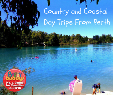 Country and Coastal Day Trips from Perth