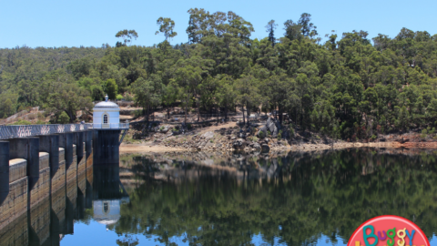 Mundaring Weir With Kids