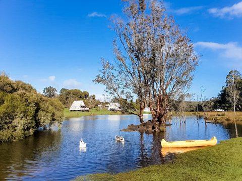 Lucieville Farmstay – Bridgetown