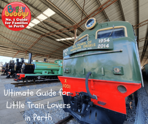 The Ultimate Guide to Trains in Perth & WA