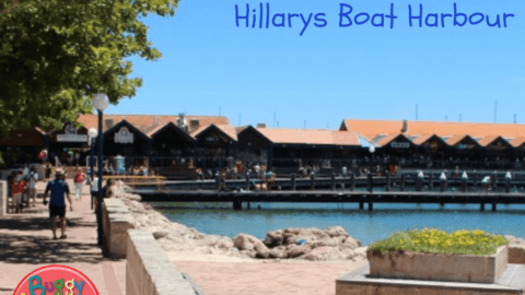 The Ultimate Kid-Friendly Guide to Hillarys Boat Harbour