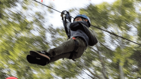 Zip Line Courses in Perth and WA