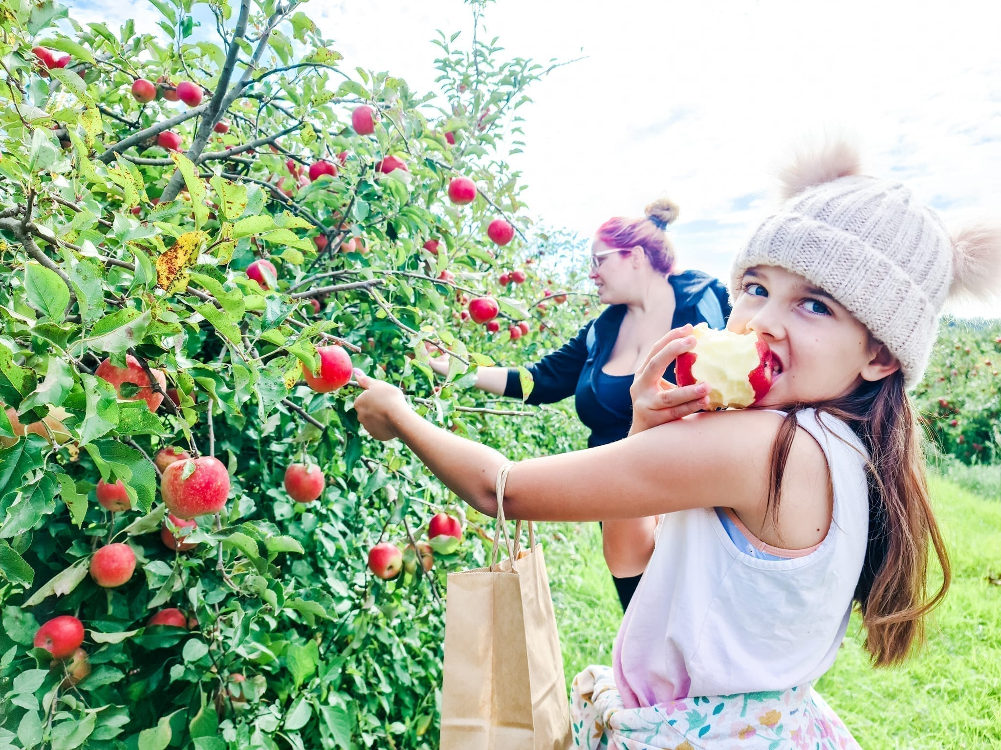 Apple Picking Tour at Core Cider House
