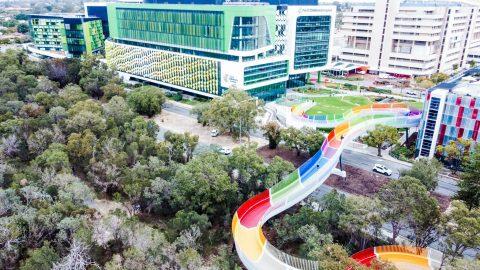 The Kids' Bridge